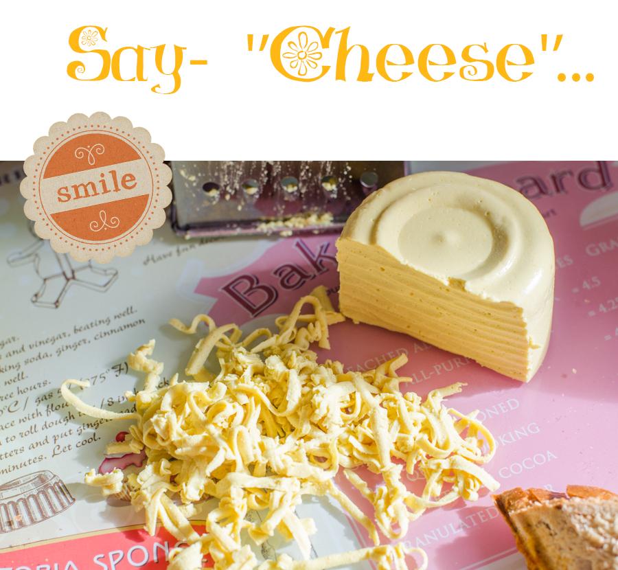 גבינה צהובה טבעונית טבעוני טבעונות
